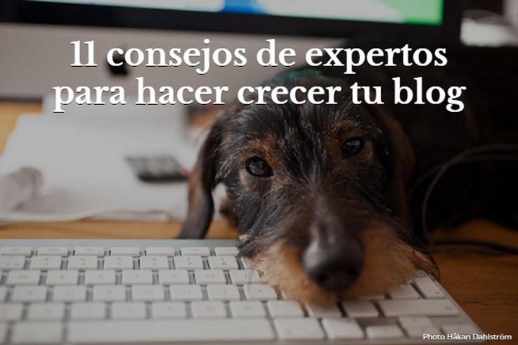 consejos-blog-expertos